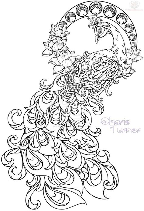 paisley pattern drawing simple colorful peacock drawing cliparts co
