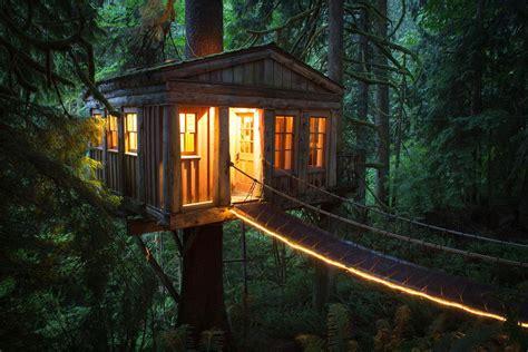 epic treehouses  built digital trends