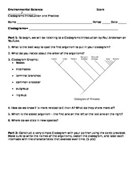 Cladogram Worksheet Answers by Cladograms Worksheet And Pr By Jenkins