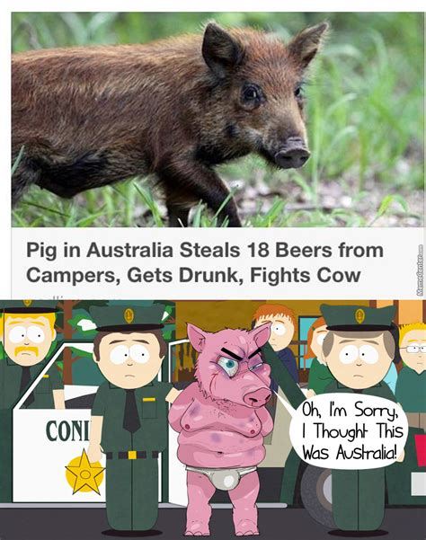 Australian Meme - australian pig by photoshoper meme center