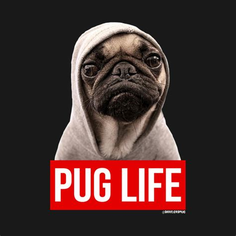 lifespan for pugs pug pug pug t shirt teepublic