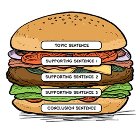 sandwich template for writing the quot paragraph hamburger quot is a writing organizer that