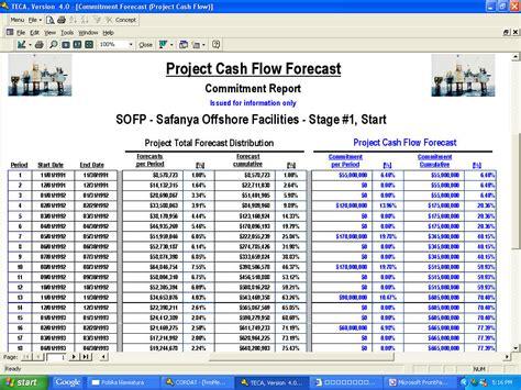 sle cash flow for project project cash flow report