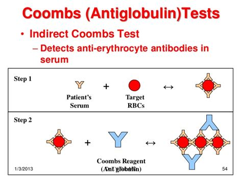 test di cooms coombs test results images
