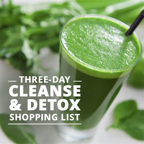 3 Day Detox Cleanse Shopping List by Three Day Cleanse Detox Shopping List Recipe Awesome