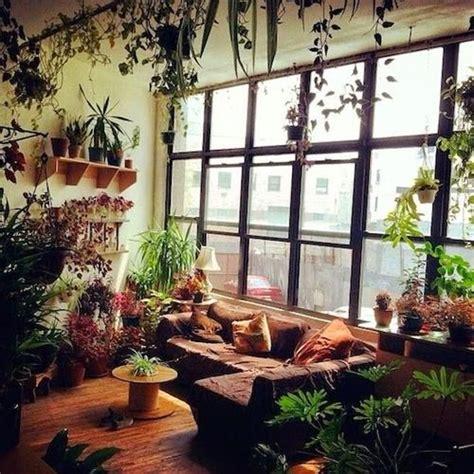 plants  interior designdream house