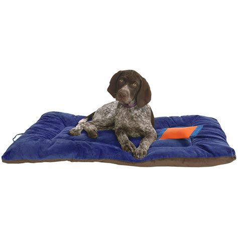 backpacking dog bed deals ollydog plush dog bed 22x36 quot large cing