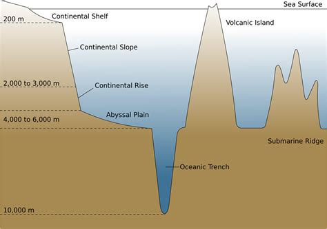 What Sea And Shelf Are South Of New Zealand by The Sea Floor Learning Geology