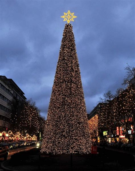 european christmas tree 100 best european city trees images on trees and rope