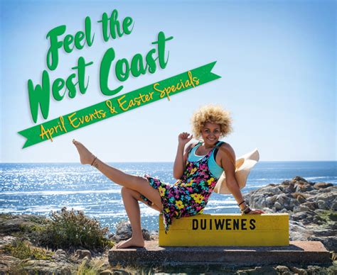 west coast shows top fireplaces in the cape west coast of south africa