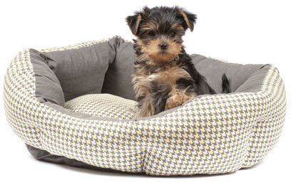 why do dogs hump their bed best 34 adorable dog beds cheap pet beds ideas fallinpets