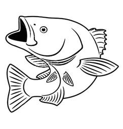 picturs to color fish coloring pages free