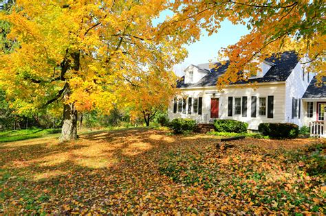 fall house a real estate agent in wilton ct you can trust premier realtor in ridgefield ct real estate