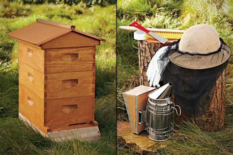 backyard honey bee hive backyard beehive uncrate