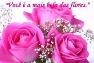 frases rosas rosas com frases de amor e paix 227 o fotos e fotos seu