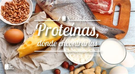 proteinas y aminoacidos proteinas y aminoacidos alimentossano