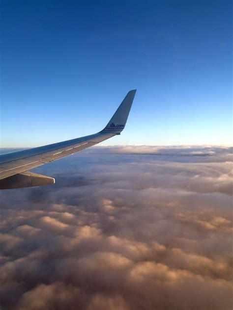 Plane Wings view plane wing susan shain