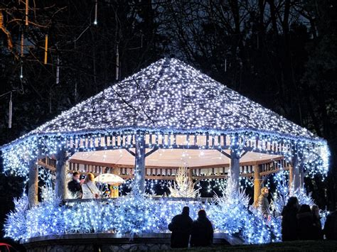 images of christmas in france 20 beautiful images that show the magic of christmas in