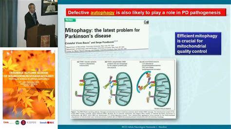 institute pavia pathogenesis and pathophysiology of pd fabio blandini