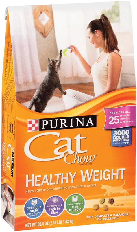 weight management cat food reviews best weight cat food lose weight tips