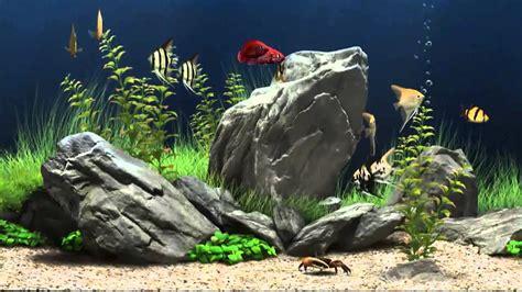 show 2013 jabardasth november 27 27 show download span free on hd aquarium screensaver amazing free aqarium screensaver