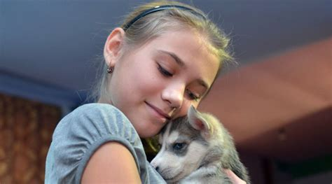 gets puppy for spirit 12yo asks putin for husky puppy for new year and gets it