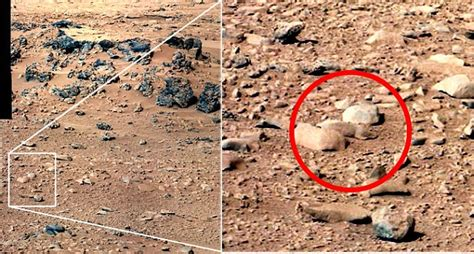 the from mars a study in the psychology of panic books gorillas on mars rock shaped like a ape joins the