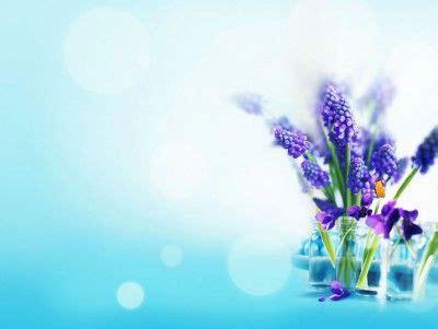 design powerpoint bunga flower tulip free template presentation background