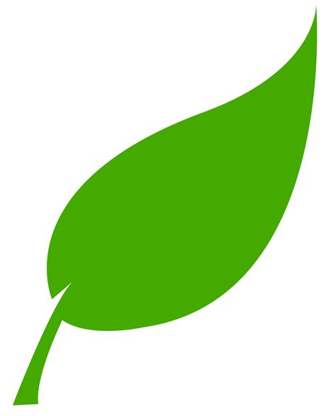 Green Leaf Outline Png by Green Energy