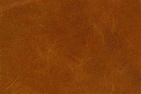 Camel Colored Swatch Color From Helvetia Leather