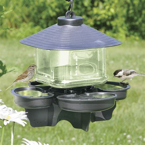 water cooler for birds with a roof duncraft bird water cooler with roof