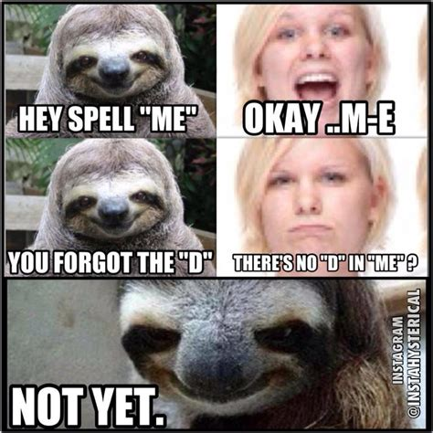 Rape Sloth Meme - image 532357 rape sloth know your meme
