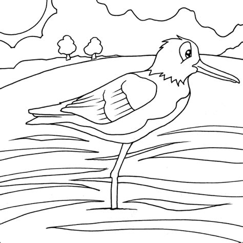 coloring pages of water birds birds kelompok bermain alia
