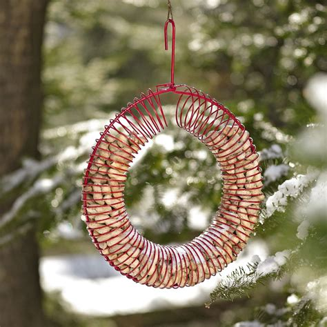 peanut wreath bird feeder and squirrel attractor the