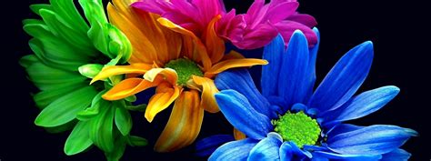 imagenes abstractas de colores coleccion de imagenes hd vi colores im 225 genes taringa
