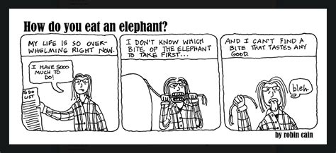 Which Do You Eat by Legacy Systems How To Eat An Elephant Morphis Insights