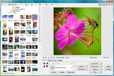 photo editor free software download full version for pc photoscape latest version free download