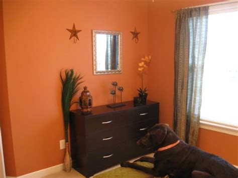 pumpkin spice paint color for the home pumpkin spice paint colours and country
