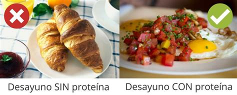 que proteina es mejor desayuno con prote 237 na el mejor para perder peso
