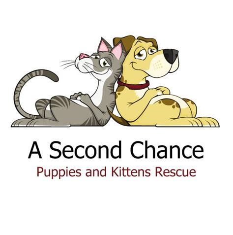 second chance puppies a second chance puppies and kittens rescue inc guidestar profile