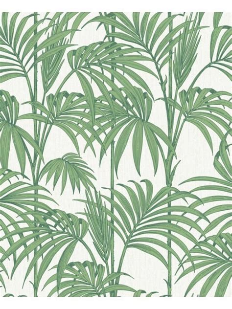 Tapisserie Graham Brown by Papier Peint Honolulu Vert Graham Brown D 233 Coration