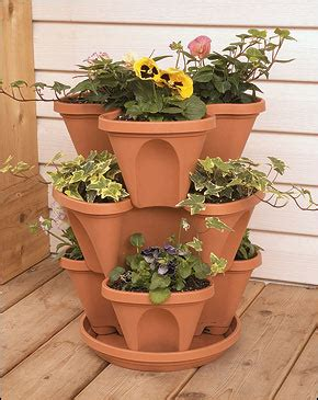 heidi horticulture limited space vertical gardening