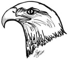 rules of the jungle printable pictures of bald eagle