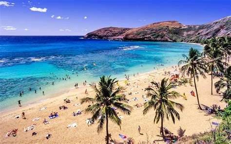 those cheap flights to hawaii are finally here
