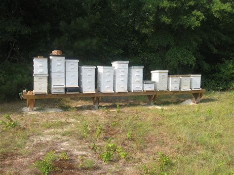 Top Bar Hive Tool Download Bee Box Plans Plans Free