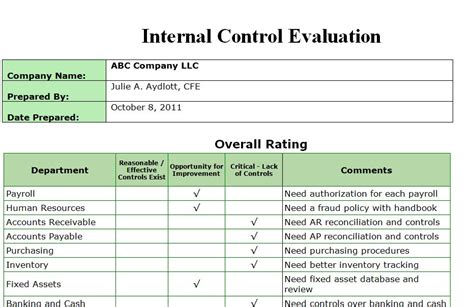 Independent Examiner S Report Template Vitalics Independent Auditor Package