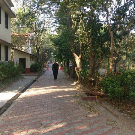 Detox Centre In Lonavala by Kaivalyadhama Lonavala All You Need To Before You