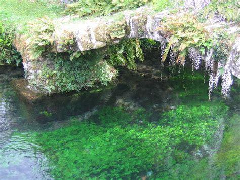 i giardini di maggio andrea marini giardini di ninfa maggio