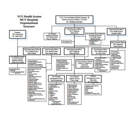 hospital organizational chart sle hospital organizational chart 10 documents in pdf