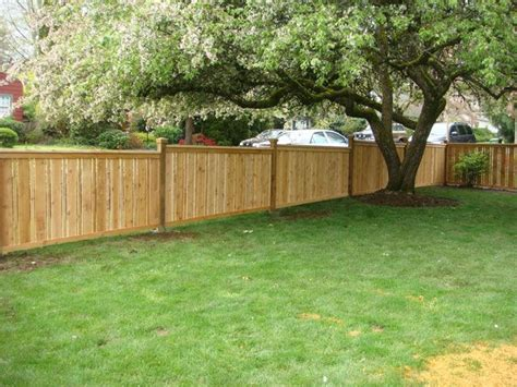 fencing a backyard 37 best images about backyard fences on pinterest picket fences backyards and fence ideas